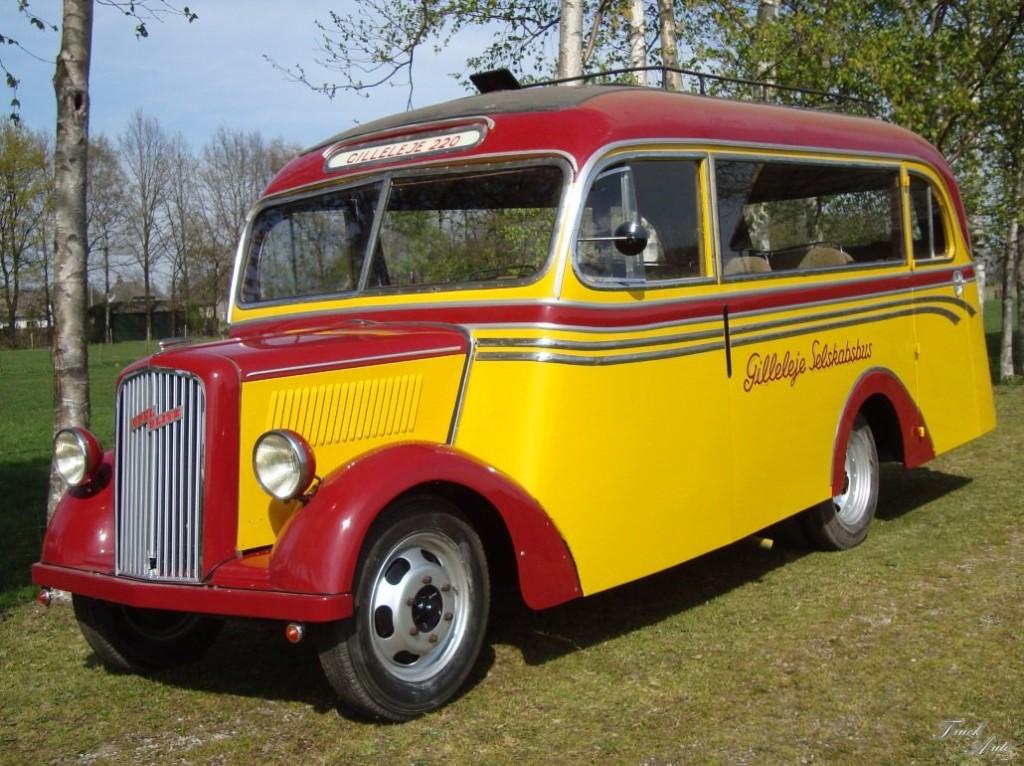 Blitz Bus