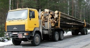 Технические характеристики лесовозов МАЗ и КамАЗ
